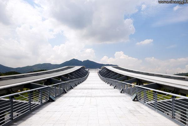 university-town-library_shenzhen_12-biblioteca dell'Università della Scienza e Tecnologia di Shenzhen