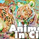 I più caratteristici Animali in Cina: le immagini