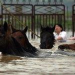Il Jiangxi devastato dalla pioggia: le immagini