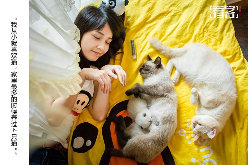 giornata del gatto in Cina