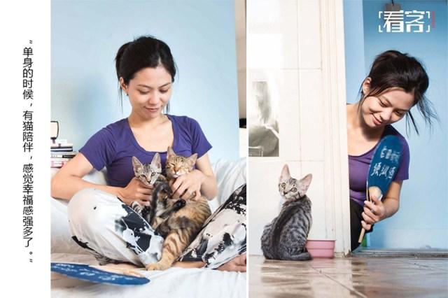 gatti in Cina