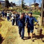 1970. Giovani studenti lavorano con contadini della minoranza etnica Yi, nello Yunnan.
