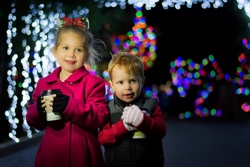 Cincinnati Zoo Festival Lights Discount Tickets
