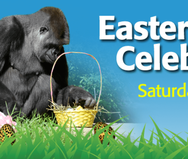 Easter Celebration On Saturday March 26 10 A M 2 P M