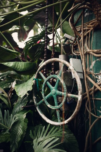 wheel with water and ferns