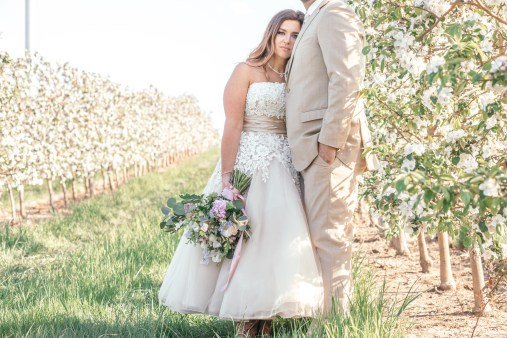 orchard wedding in spring