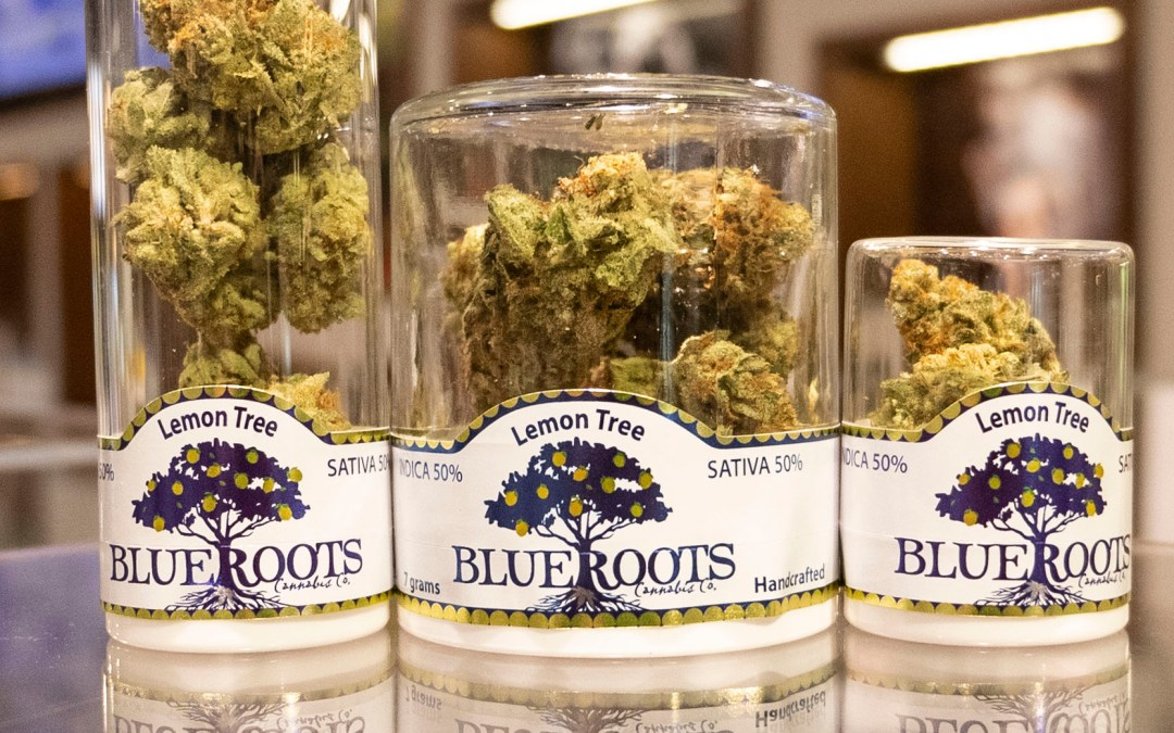 The Budtender's Review Corner: Blue Roots Farms' Lemon Tree Flower