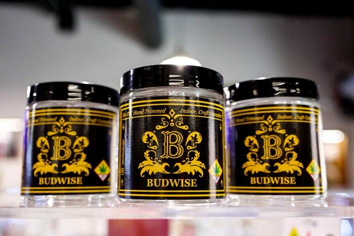 Introducing Budwise