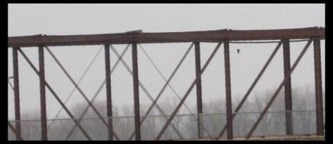 December 12, 2104 - walk beside the Des Moines River