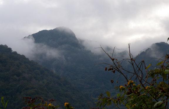 La Tigra National Park is a cloud forest.