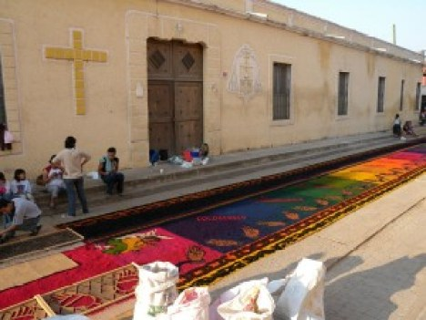 Groups put the finishing touches on las alfombras as the sun rises.