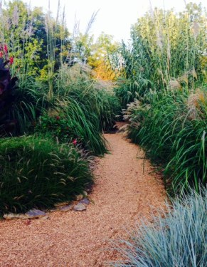 botanical grasses garden