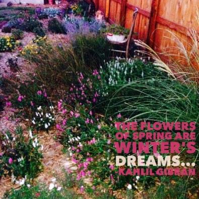 word swag garden