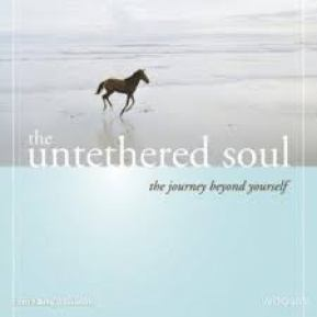 untethered soul pic