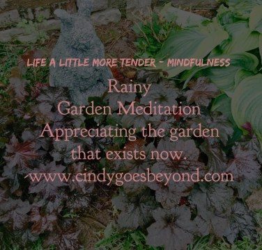 Rainy Garden Meditation