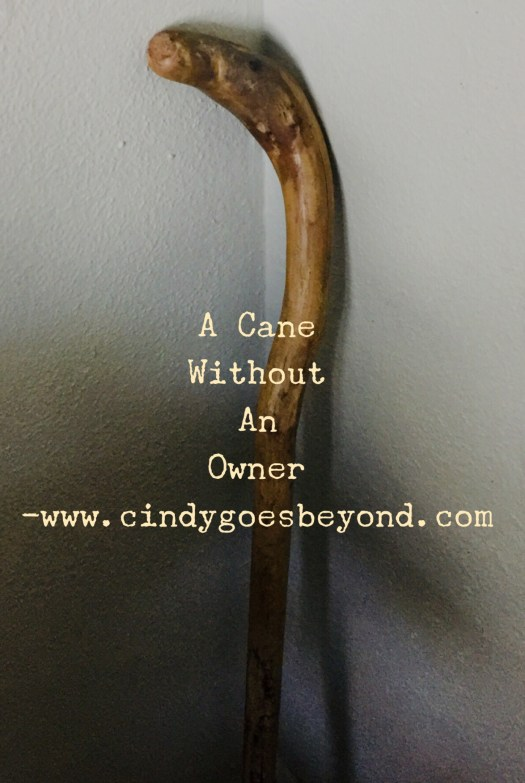 A Cane Without An Owner