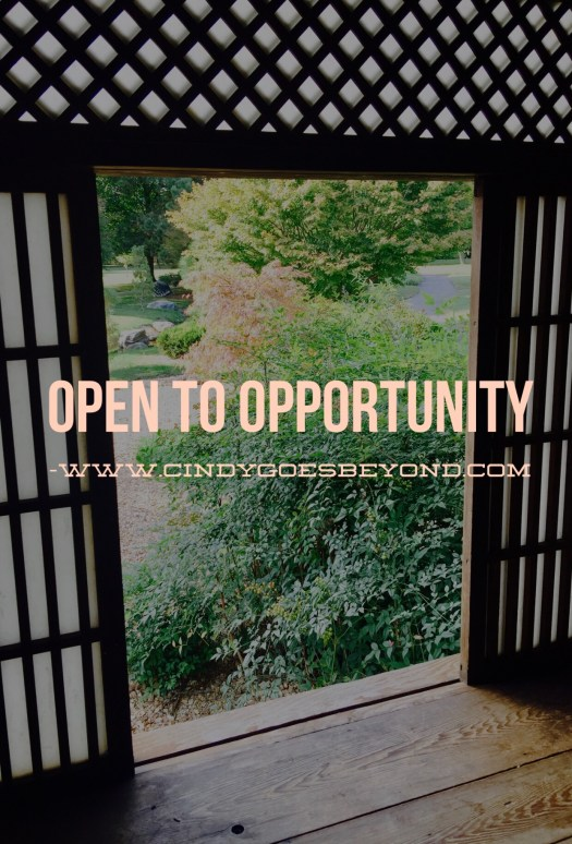 Open to Opportunity