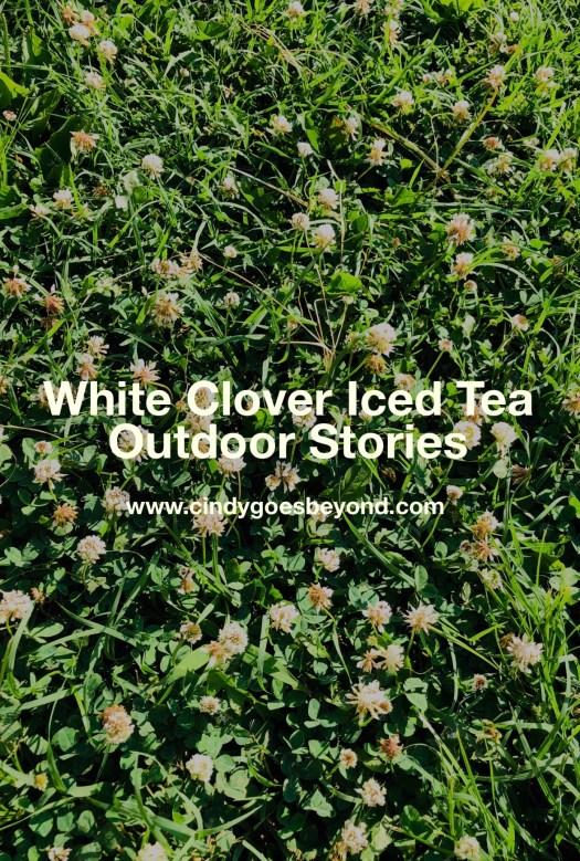 White Clover Iced Tea
