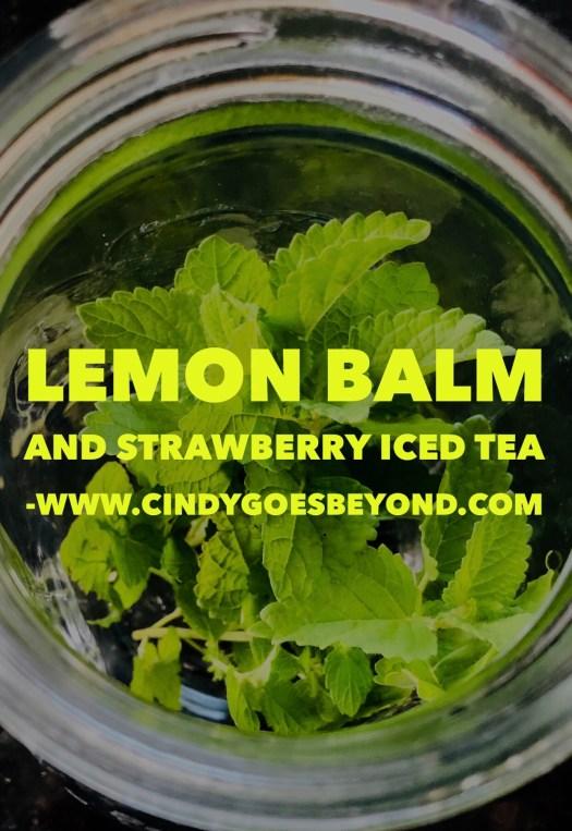 Lemon Balm and Strawberry Iced Tea