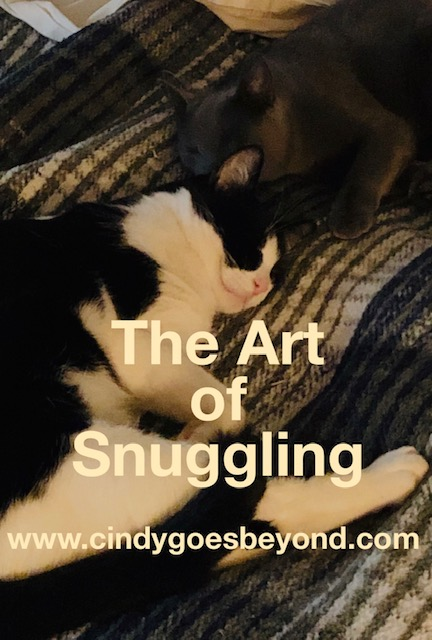 The Art of Snuggling