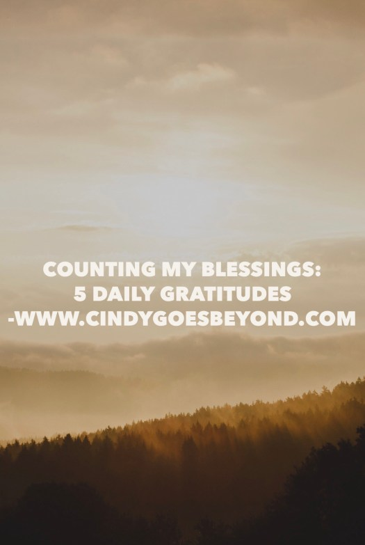Counting My Blessings 5 Daily Gratitudes