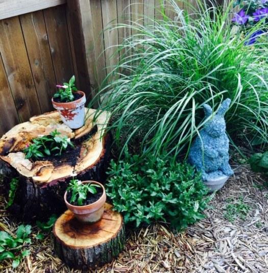Ecological Garden Hacks