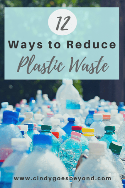 12 Ways to Reduce Plastic Waste Title Meme