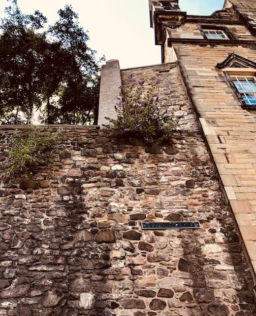 Wandering Through Edinburgh Wall