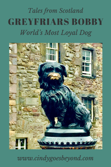 Greyfriars Bobby Words Most Loyal Dog title meme