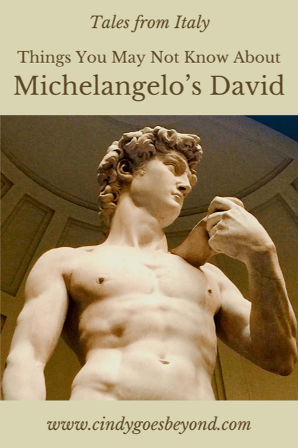 Things You May Not Know About Michelangelo's David title meme