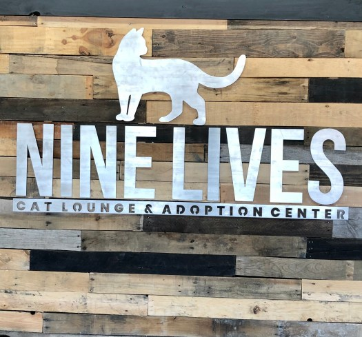 Nine Lives Cat Lounge and Adoption Center logo