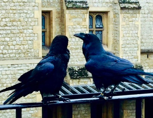 Good Luck Traditions from England ravens