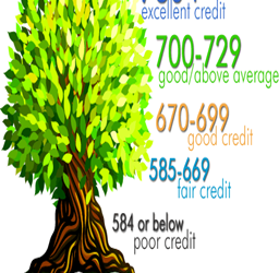 Why Do Credit Scores Vary Amongst Credit Bureaus?