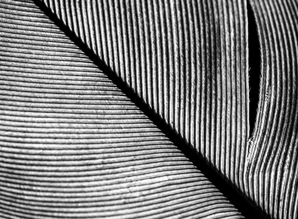 Cindy Hess, Leipzig, Fotografin, photography, architecture, skyscraper, Hochhaus, Architektur, mdr