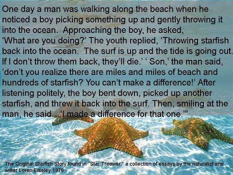 the story about the starfish
