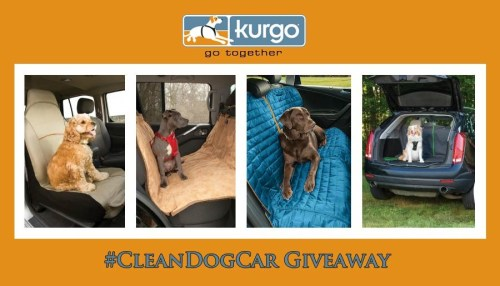 Kurgo Clean Car Giveaway
