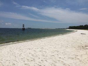 Alabama Gulf Coast Cindy M Jones