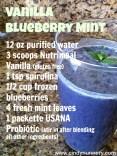 Vanilla Blueberry Mint Smoothie