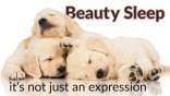 Is Beauty Sleep a Myth?