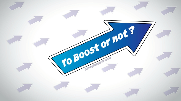 To Boost or Not to Boost a Facebook Post