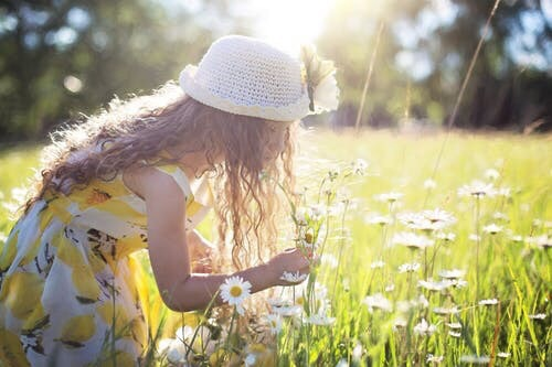 A girl picking daisies in a field.