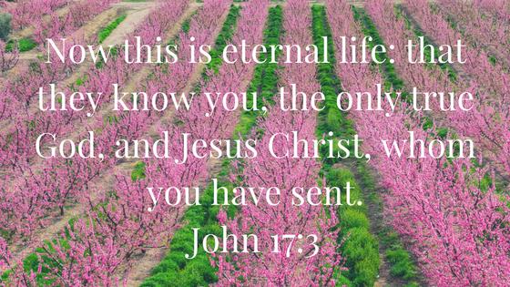 John 17, 3.png