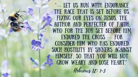 Bible verse Hebrews 12:1-3