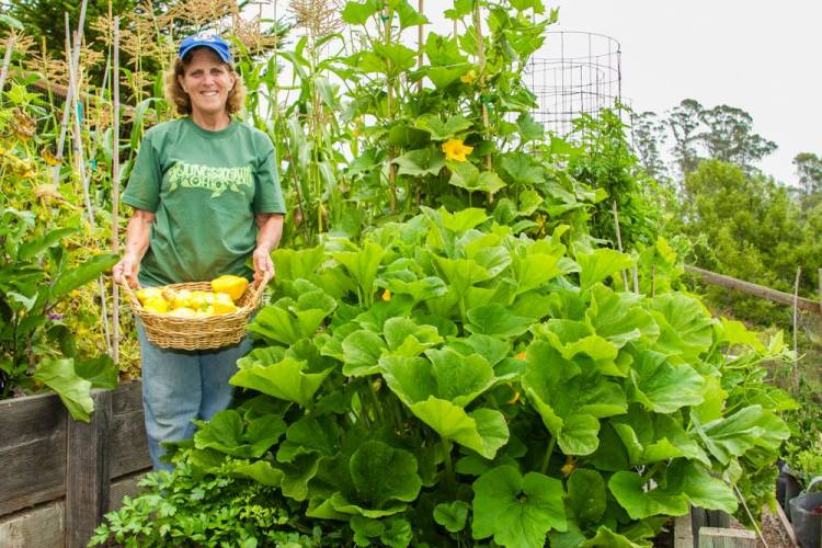 cindy with squash plant in garden, gardening class