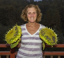 cindy holding sunflowers