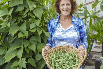 cindy in her garden with a basket of beans