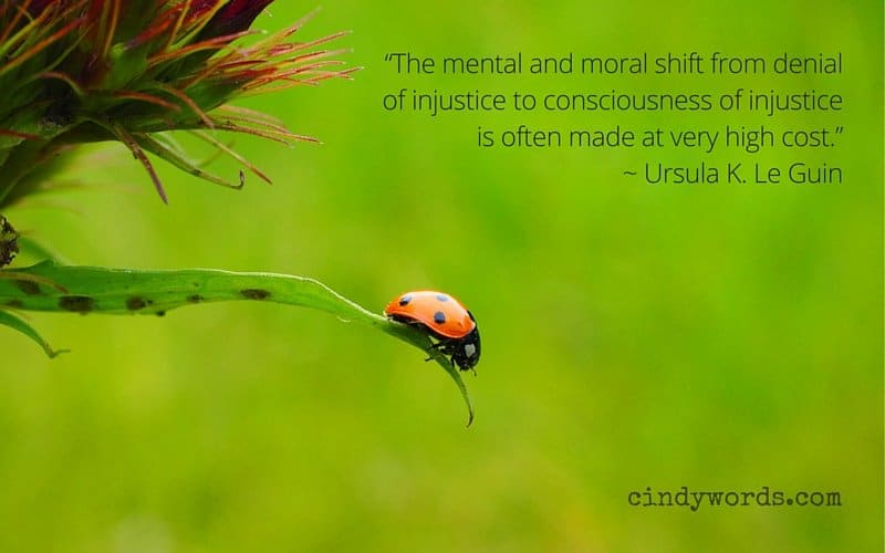 """The mental and moral shift from denial of injustice to consciousness of injustice is often made at very high cost."""