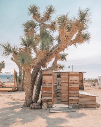 Joshua tree outdoor shower