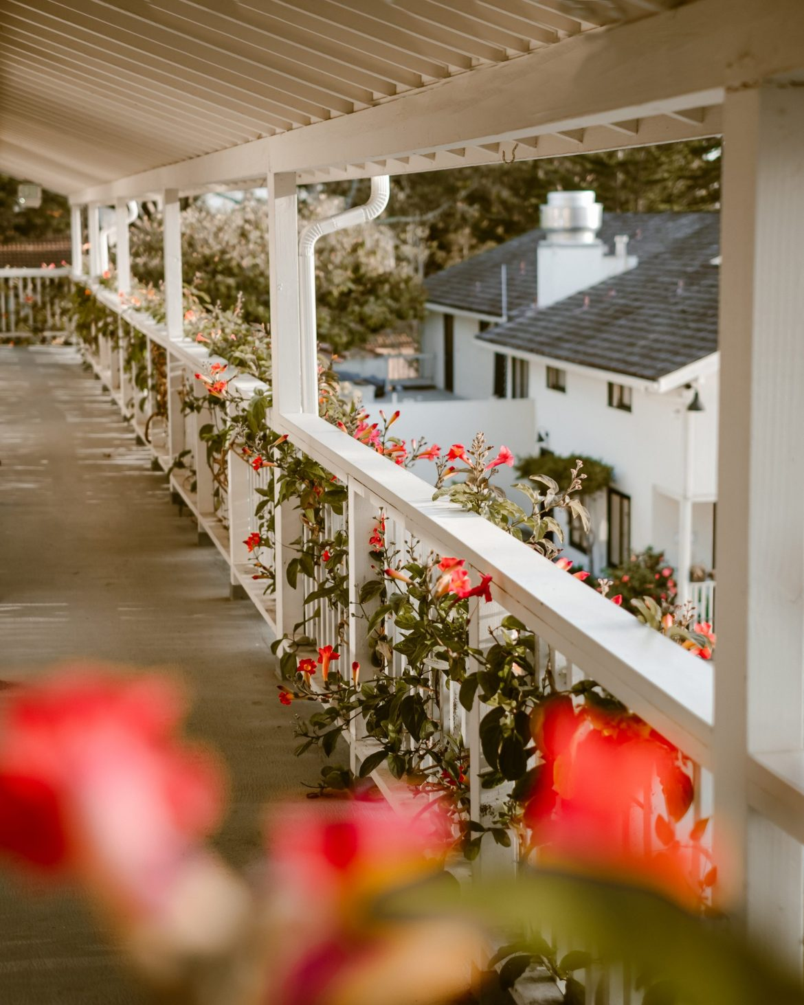 8 Highlights from the dreamiest stay at The Hotel Carmel