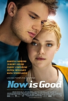 Film Review: 'Now Is Good'